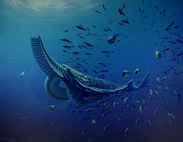 Artists' reconstruction of Tamisiocaris borealis. Alongside it are several specimens of the early chordate Myllokunmingia known from similar aged deposits in China as well as the enigmatic vetulicolian, Ooedigera peeli and the bivalved arthropod Isoxys volucris both known from Sirius Passet. Painting by Rob Nicholls, Palaeocreations.